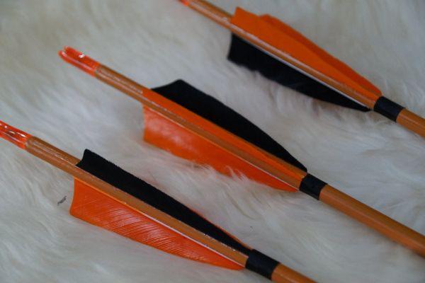 arrow-21F4C14E96-3F16-274F-18CF-E0B98CB6CEA0.jpg