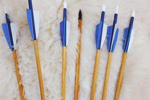 arrow-253D88BD70-02EF-55D3-1B24-B5C01F2D641A.jpg