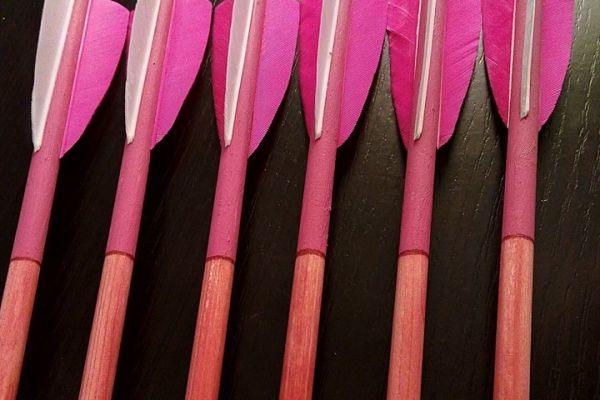 arrow-3082E59E01-F229-6A11-B1AF-573990ACDD11.jpg