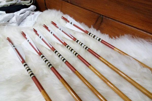 arrow-4009B37C5A-06F9-CA01-9D41-B3E89394F79B.jpg